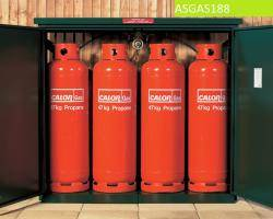 Gas Storage Cage - 4 x 47KG Propane Cage - Calor Approved Warehouse Ladder